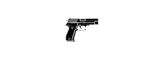 Image weapon b79310ca p226mk25.08870687